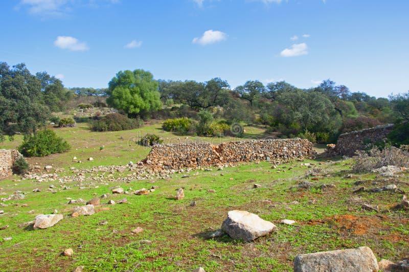 Vecchio muro di mattoni marroni sul campo verde, grosse pietre bianche, piccola foresta Il giorno dell'autunno a Siviglia, Spagna immagini stock
