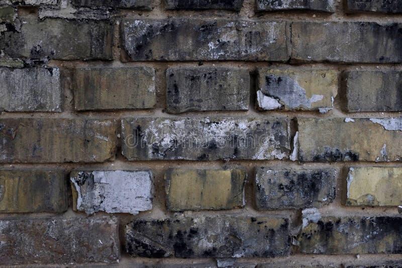 Vecchio muro di mattoni Priorità bassa per il vostro disegno immagine stock