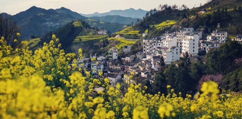 Vecchio paesaggio antico cinese della casa della valle in montagna con i fiori, nell'Anhui, la Cina immagine stock