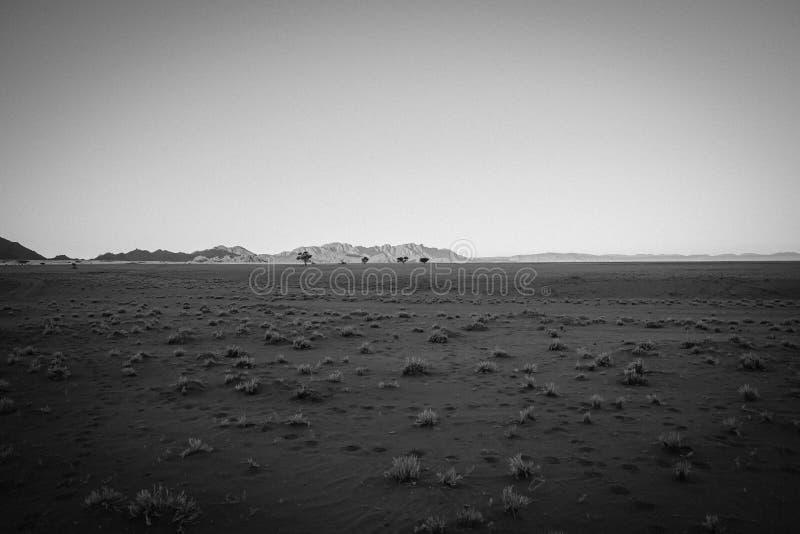 Vecchio paesaggio piano in genere asciutto granulare di immagine di effetto di stile fotografia stock