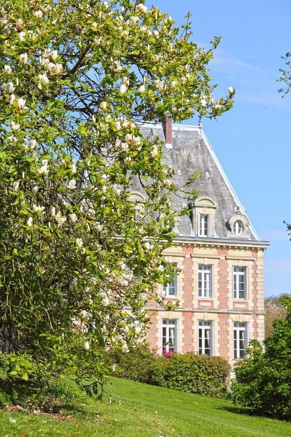 Vecchio palazzo sulla collina verde fotografia stock
