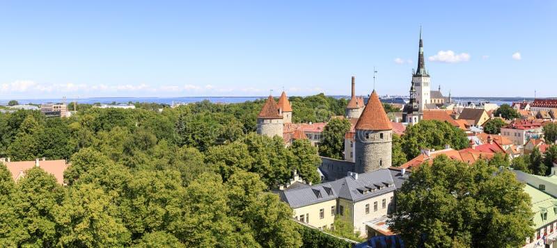 Vecchio panorama della città della città di Tallinn di estate fotografia stock