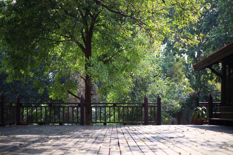 Vecchio pavimento di legno, balcone, casa asiatica d'annata di stile per il fondo verde astratto dell'albero fotografia stock