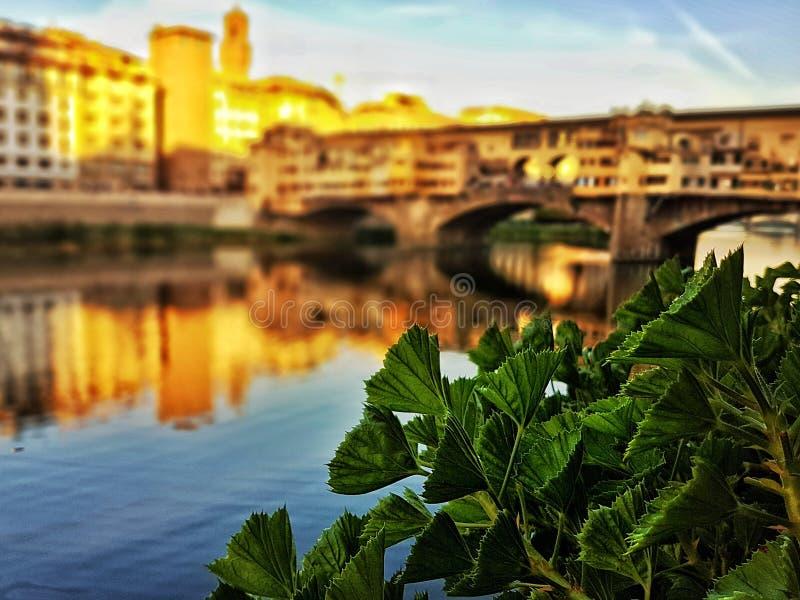 Vecchio Ponte в Firenze стоковая фотография rf