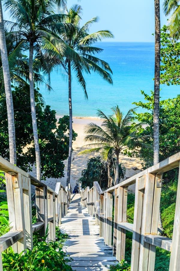 Vecchio ponte del legname alla spiaggia fotografia stock libera da diritti