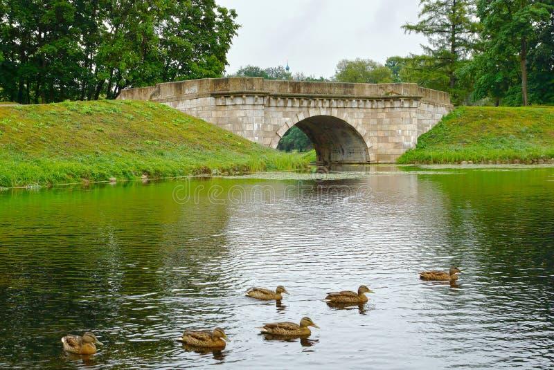 Vecchio ponte di pietra in Gatcina, città vicino a San Pietroburgo immagine stock libera da diritti
