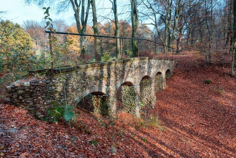 Vecchio ponte di pietra in mezzo ad una foresta olandese in bello Au fotografia stock