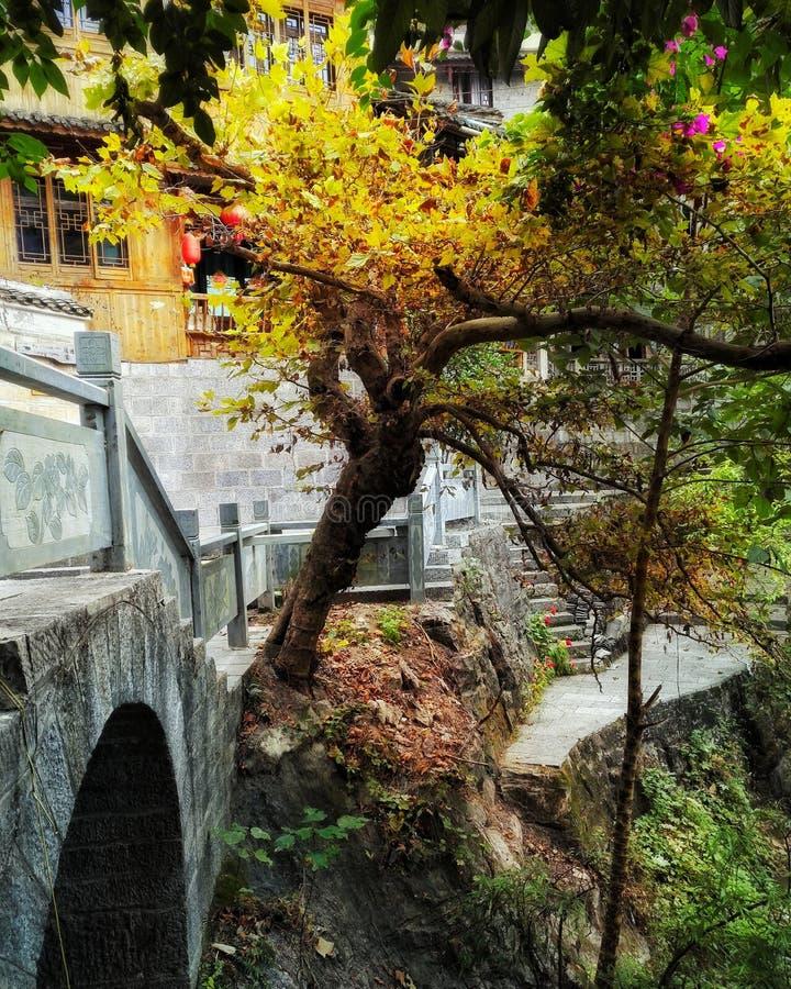 Vecchio ponte di pietra nel colore 3 di caduta fotografie stock libere da diritti