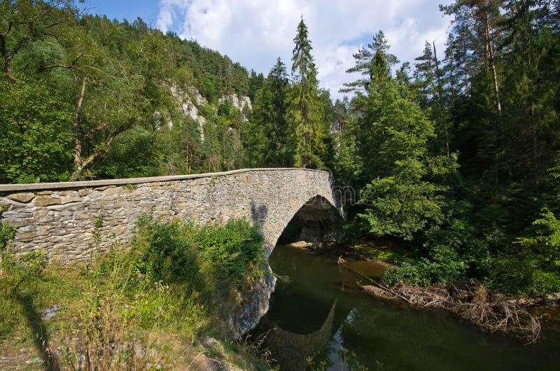 Vecchio ponte di pietra sopra paradiso del fiume di Hornad, Slovacchia immagine stock