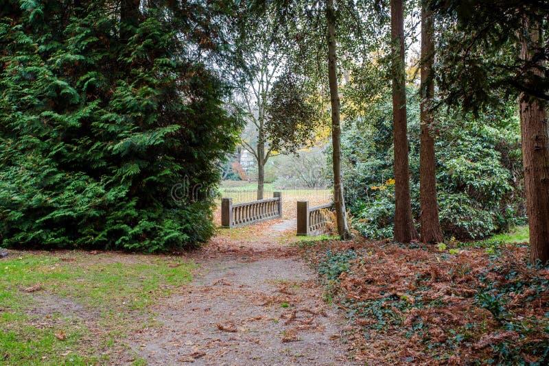 Vecchio ponte di pietra in un parco verde fotografia stock