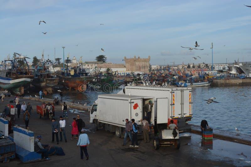 Vecchio porto di Essaouira, Marocco fotografie stock