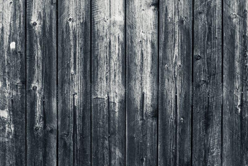 Vecchio recinto grigio di legno misero Superficie di legno grigia Bordi di legno grigi dilapidati con la bulletta per suole Backg immagine stock