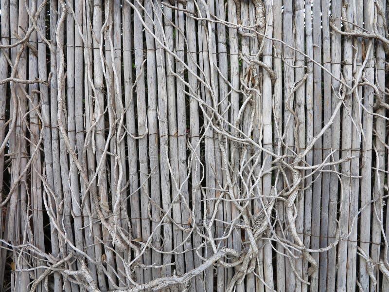 Vecchio recinto invaso di legno d'annata immagine stock libera da diritti