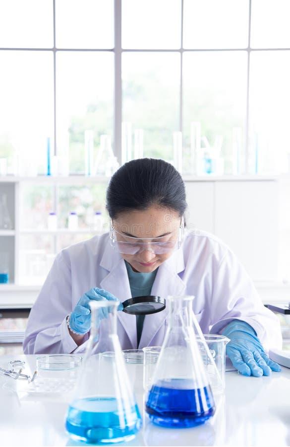 Vecchio sguardo dello scienziato della donna dell'Asia sebbene lente d'ingrandimento alla capsula di Petri fotografie stock libere da diritti