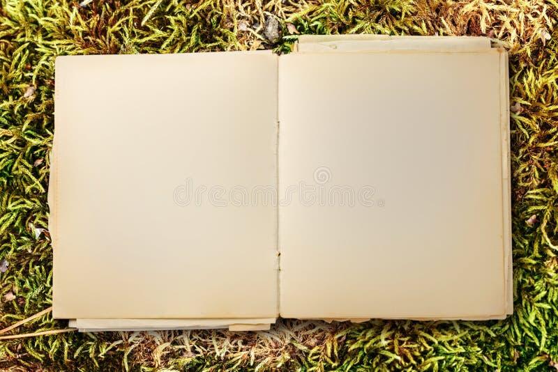 Vecchio taccuino in bianco aperto immagini stock libere da diritti