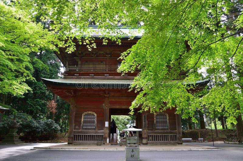 Vecchio tempio e foglie verdi, Giappone fotografia stock libera da diritti