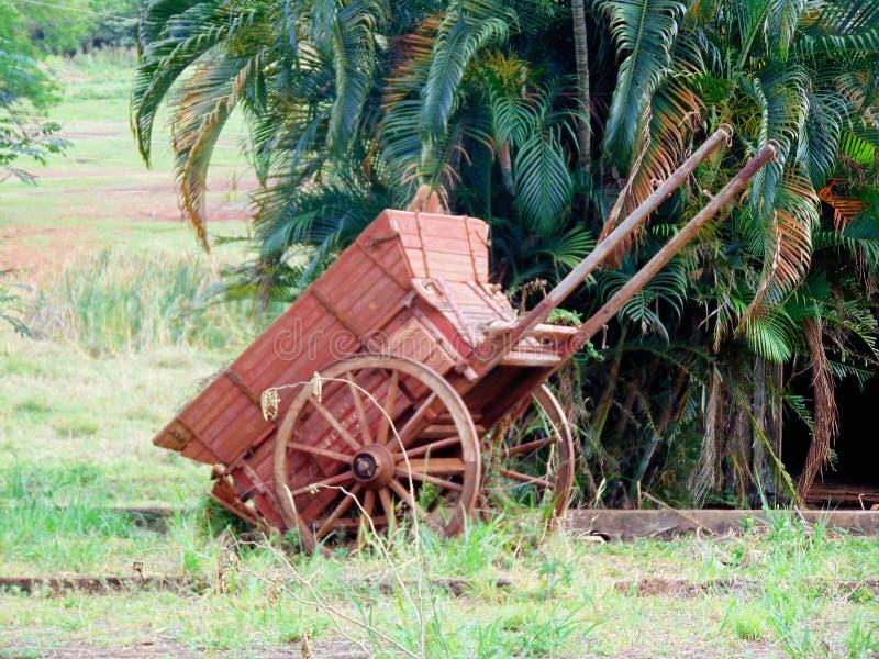 Vecchio vagone di legno della ruota immagine stock libera da diritti