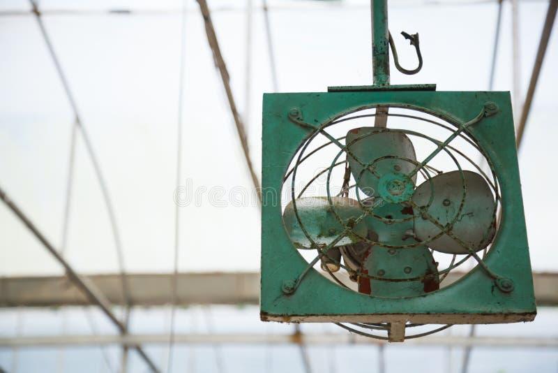 Vecchio ventilatore di fan meccanico invecchiato del metallo del retro soffitto dell'interno verde rustico d'annata per ventilazi fotografie stock