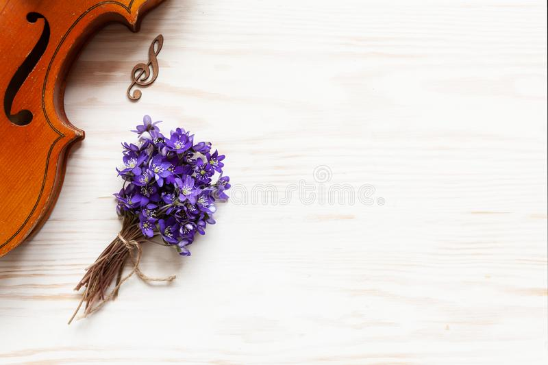 Vecchio violino e piccolo mazzo di hepatica viola fresco sui precedenti di legno bianchi Vista superiore, primo piano fotografie stock