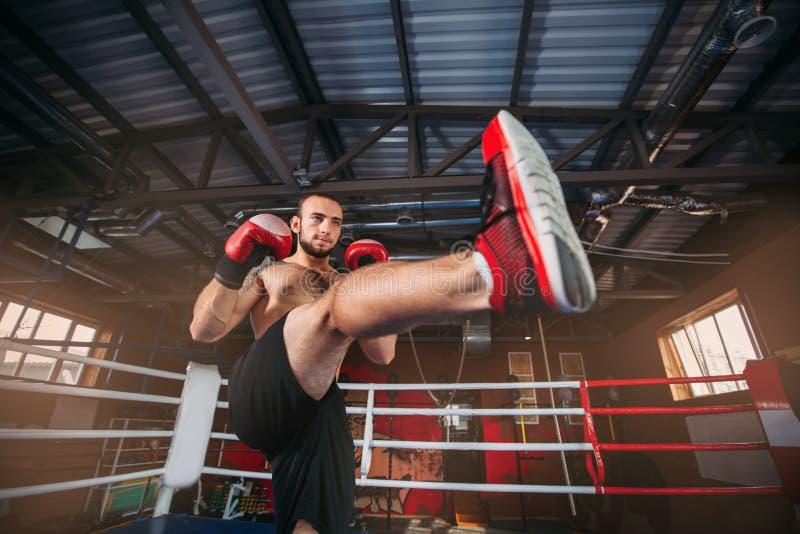 Vechter in rode bokshandschoenen bij een opleiding stock fotografie
