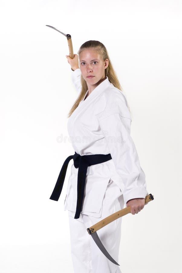 Vechtsporten royalty-vrije stock fotografie