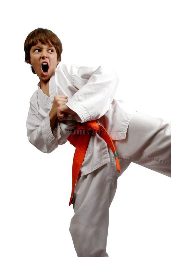 Vechtsportenjongen royalty-vrije stock afbeelding