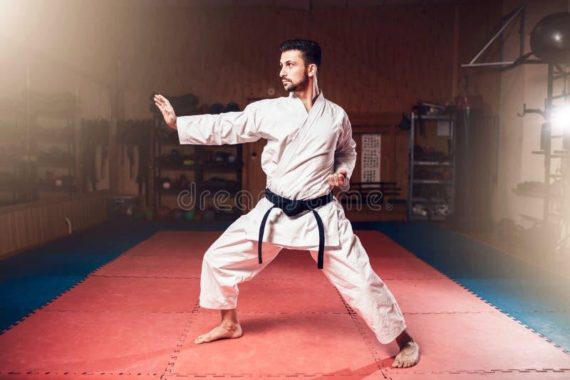Vechtsportenmeester, zwart band, karate royalty-vrije stock afbeelding