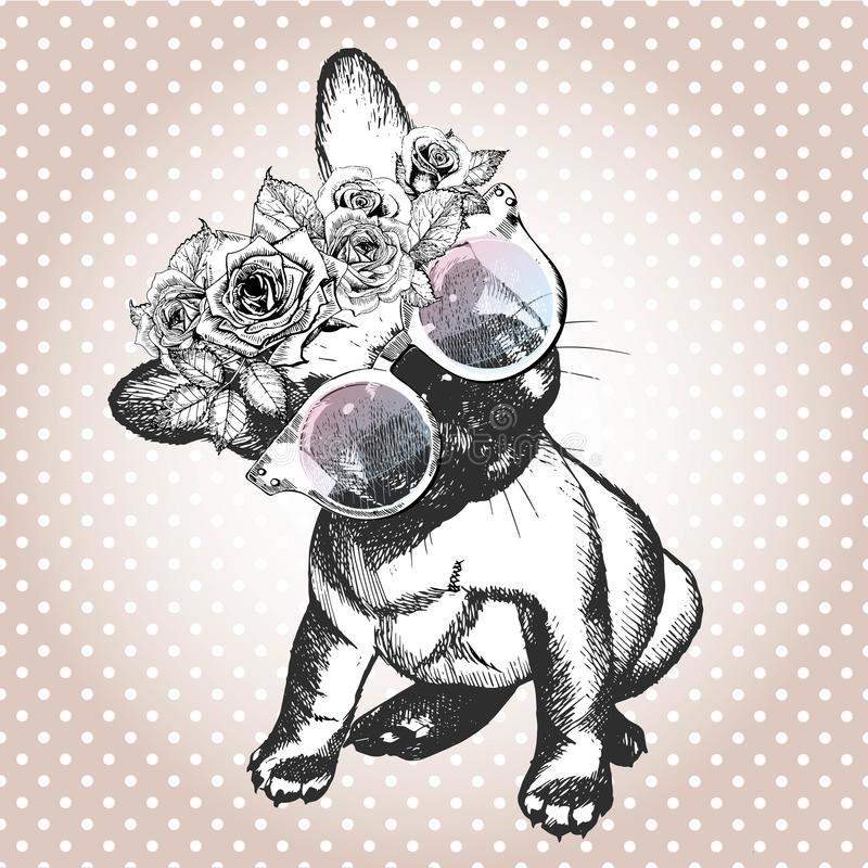 Vecotr portrait of dog, wearing the floral wreath and sunglasses. French bulldog breed. stock illustration