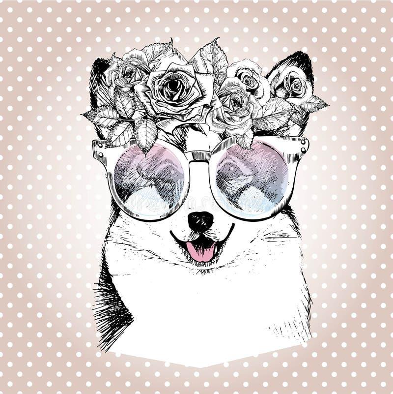 Vecotr stående av hunden och att bära den blom- kransen och solglasögon Avel för Wesh corgipembroke vektor illustrationer