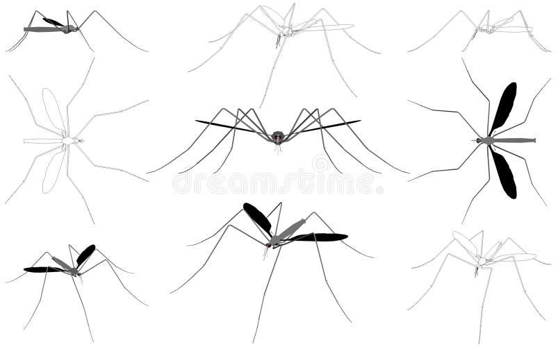 Vecteur 01 de moustique illustration de vecteur