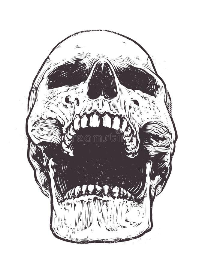 Vecteur anatomique de crâne illustration libre de droits