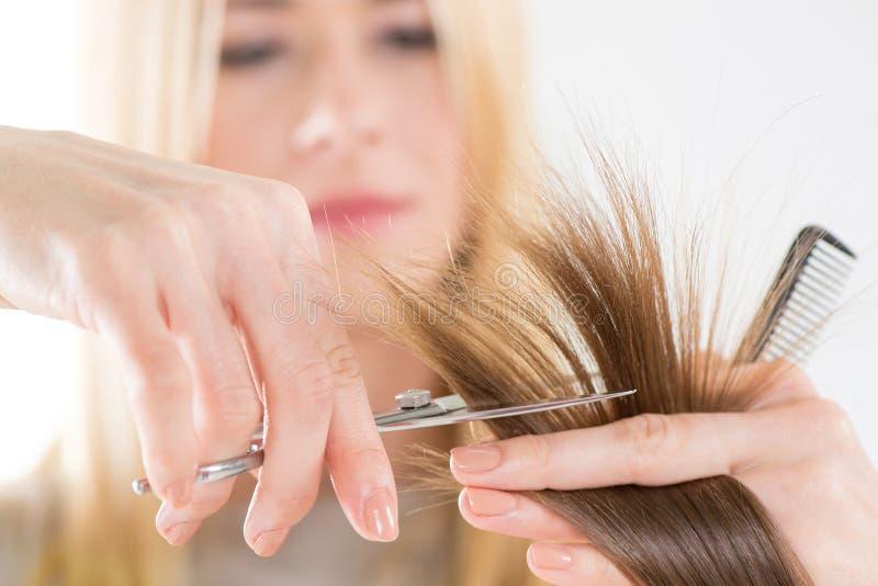vecteur artistique d'illustration de hairdress de cheveu de découpage images libres de droits