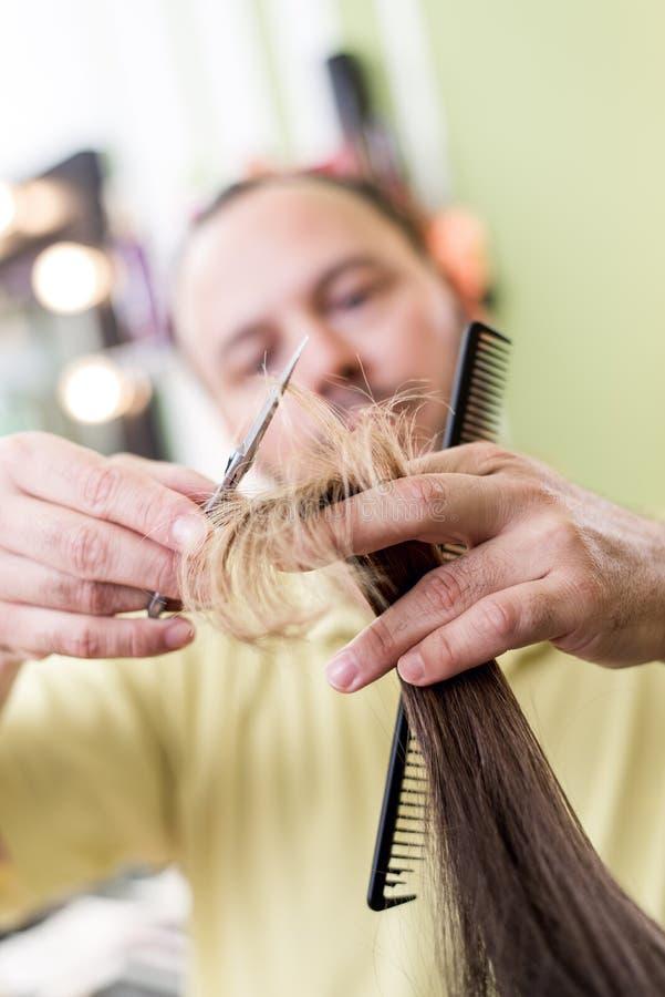 vecteur artistique d'illustration de hairdress de cheveu de découpage images stock