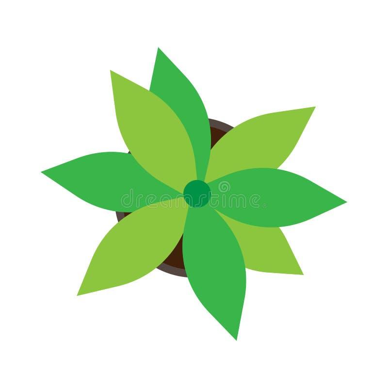 Vecteur blanc d'isolement par pot de fleurs de vue supérieure Flore plate d'icône de croissance verte de plante d'intérieur illustration libre de droits