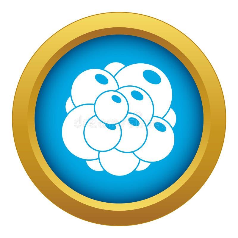 Vecteur bleu d'icône d'ovaire d'isolement illustration stock