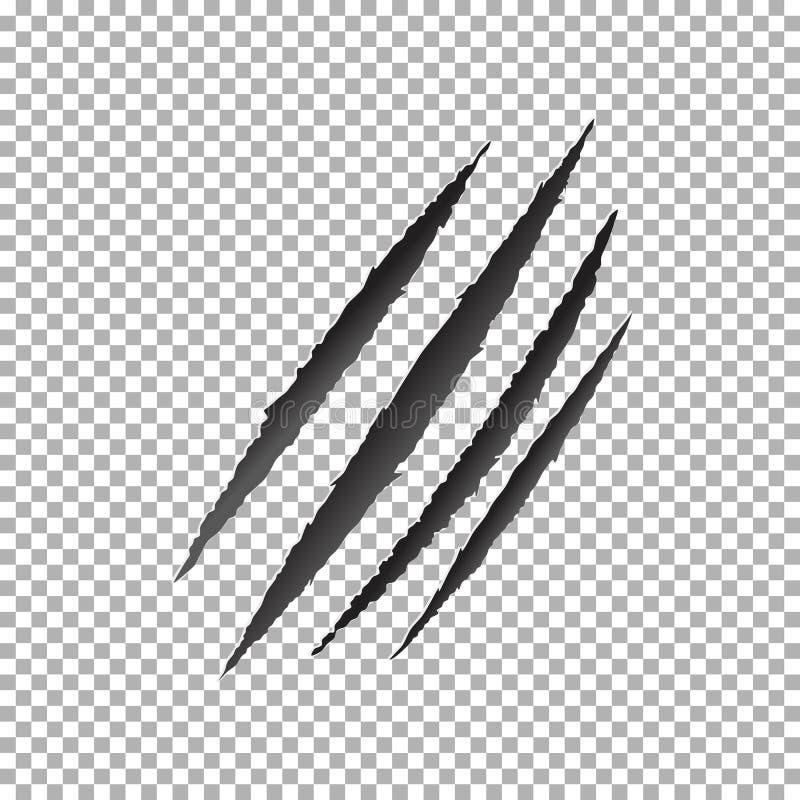 Vecteur d'éraflure de griffes, éraflure animale de griffe illustration de vecteur