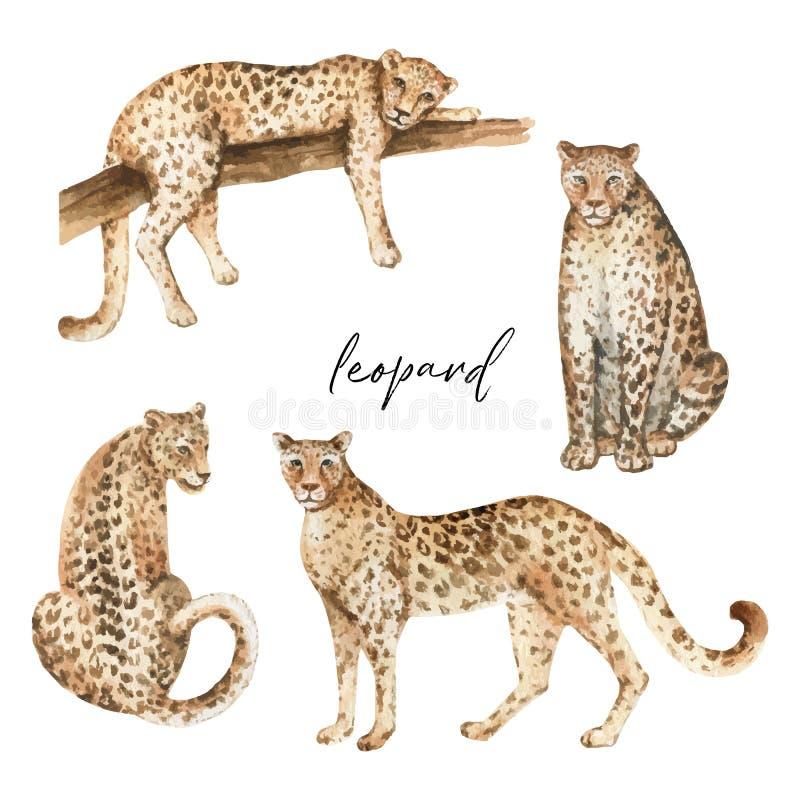 Vecteur d'aquarelle réglé avec le léopard et les feuilles tropicales vertes d'isolement sur le fond blanc illustration stock