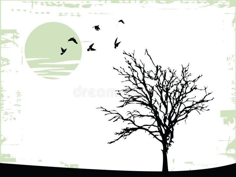 vecteur d'arbre illustration libre de droits
