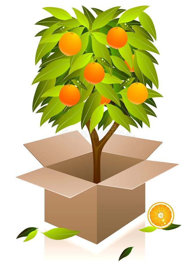 vecteur d'arbre orange illustration libre de droits
