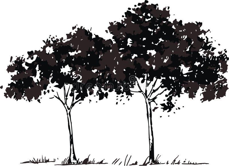 vecteur d'arbres