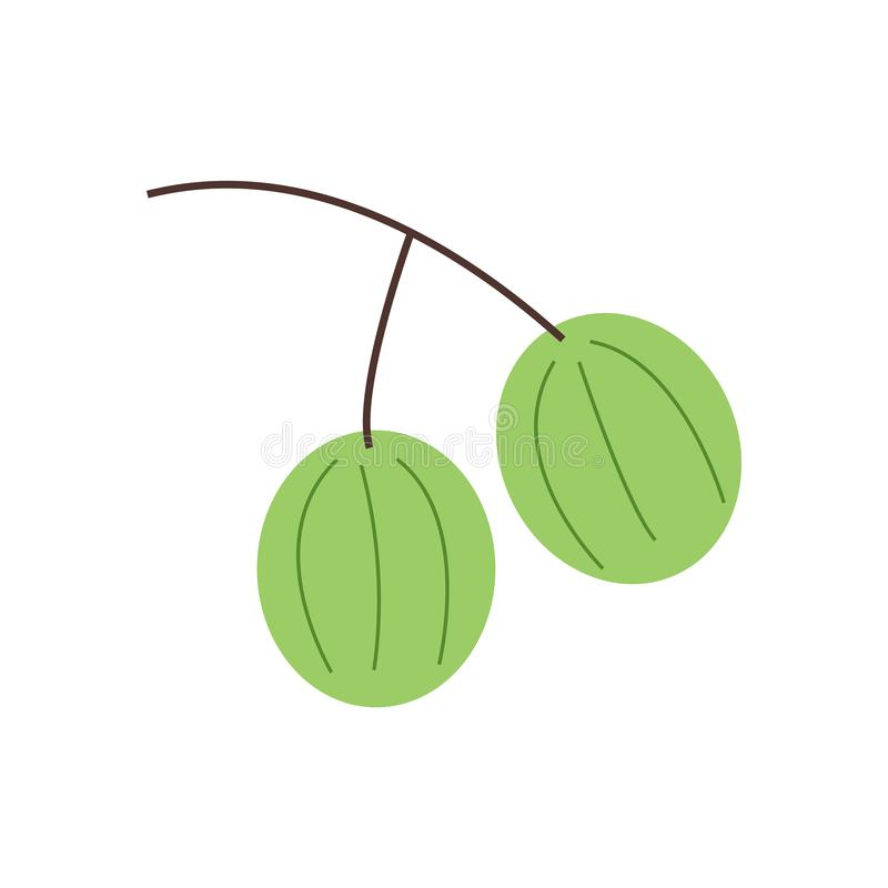 Vecteur d'icône de groseille à maquereau d'isolement sur le fond blanc, signe de groseille à maquereau illustration de vecteur