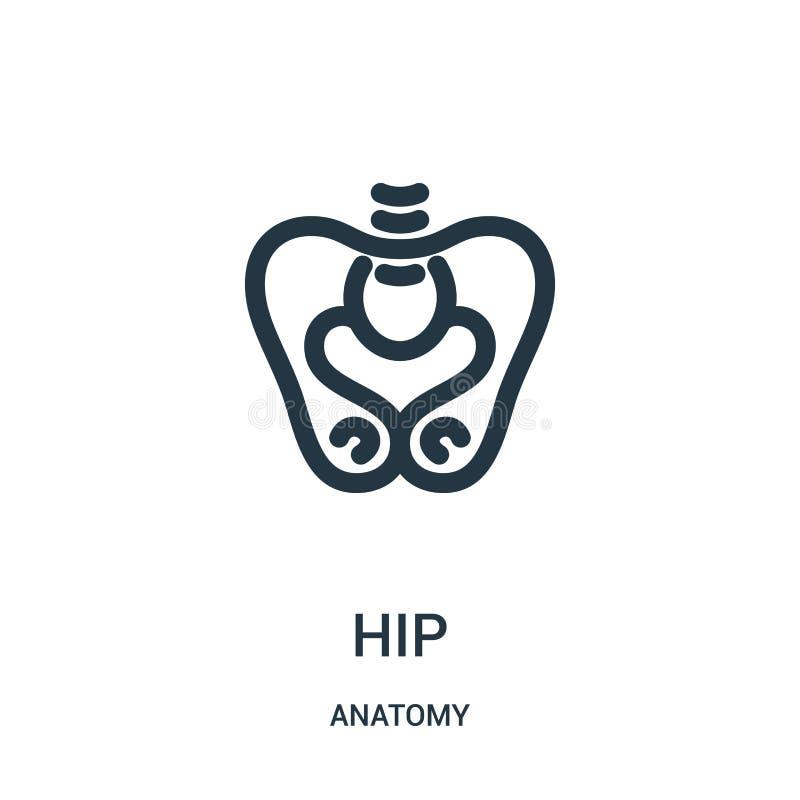 vecteur d'icône de hanche de collection d'anatomie Ligne mince illustration de vecteur d'icône d'ensemble de hanche Symbole linéa illustration libre de droits