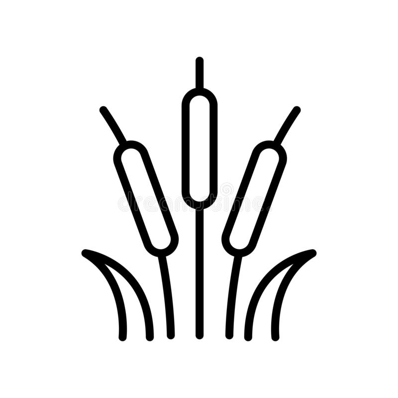 Vecteur d'icône de lit de Reed d'isolement sur le fond blanc, signe de lit de Reed illustration de vecteur