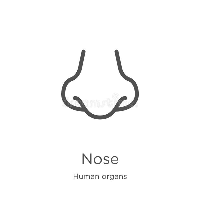 vecteur d'icône de nez de collection d'organes humains Ligne mince illustration de vecteur d'ic?ne d'ensemble de nez Contour, lig illustration libre de droits