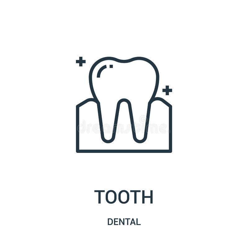 vecteur d'ic?ne de dent de la collection dentaire Ligne mince illustration de vecteur d'ic?ne d'ensemble de dent Symbole lin?aire illustration stock