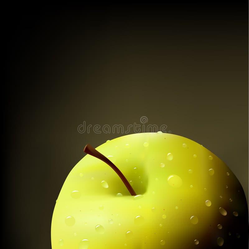 vecteur d'illustration de pomme illustration de vecteur