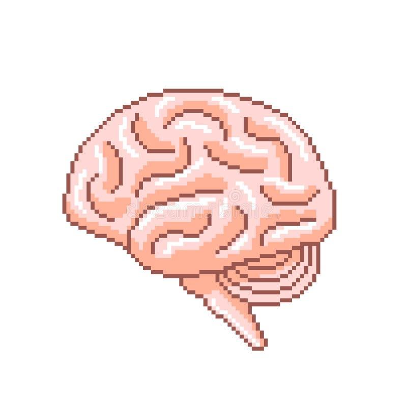 Vecteur d'isolement par illustration détaillée de profil d'esprit humain de pixel illustration de vecteur