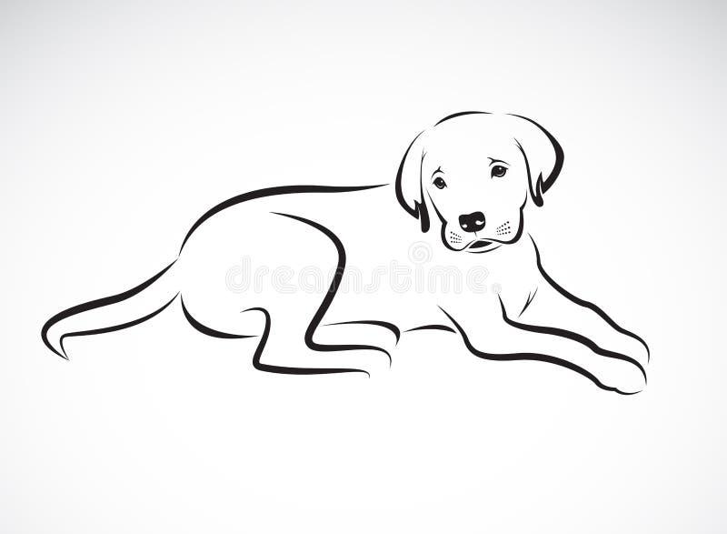 Vecteur d'un chien Labrador sur le fond blanc pet Animal illustration stock