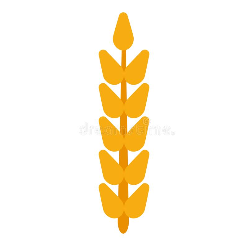 Vecteur de blé d'oreille de grain de champ Nourriture d'agriculture de seigle de pain de ferme de récolte Usine de fond d'isoleme illustration de vecteur