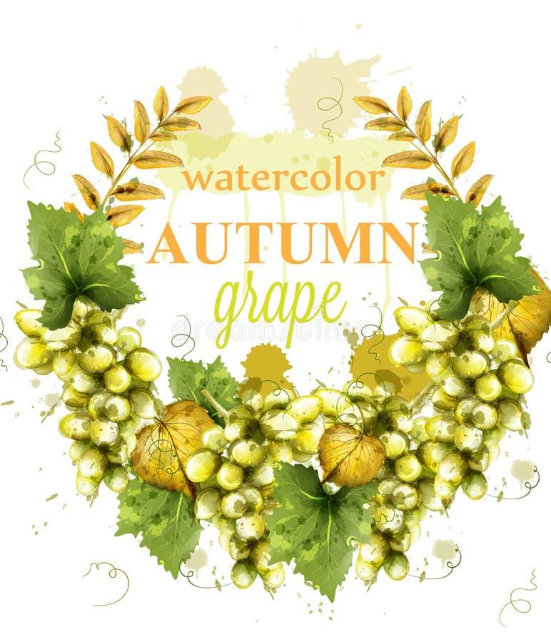 Vecteur de carte d'aquarelle de guirlande de raisins blancs Calibres peints de style d'éclaboussure illustration stock